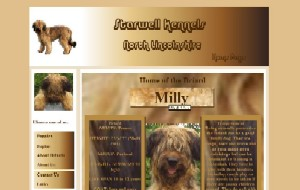 Website Designed By Raymond Howell At Home Call Computer Repairs, Lincolnshire, www.starwell-kennels.co.uk